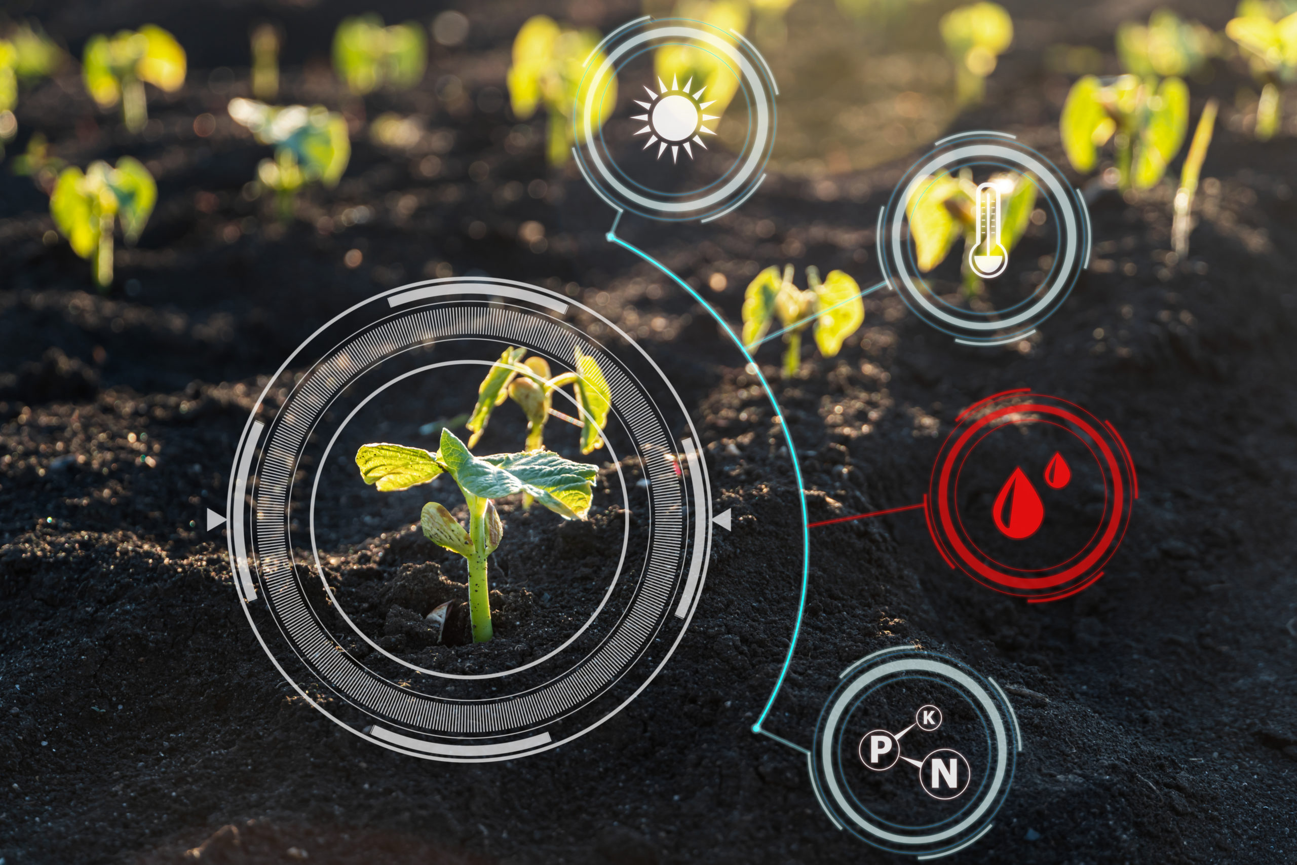 Nowoczesne kwalifikacje rolnicze włączone do ZSK